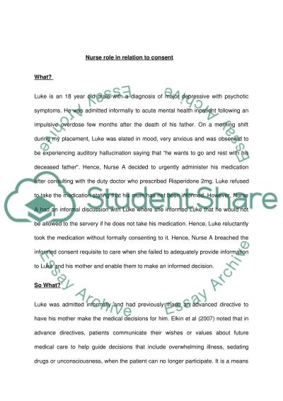 Professional Issue Essay example