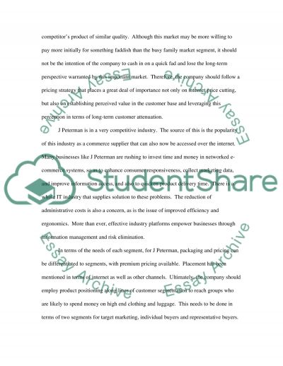 E-Marketing Segmentation, Differentiation, and Positioning Strategies essay example