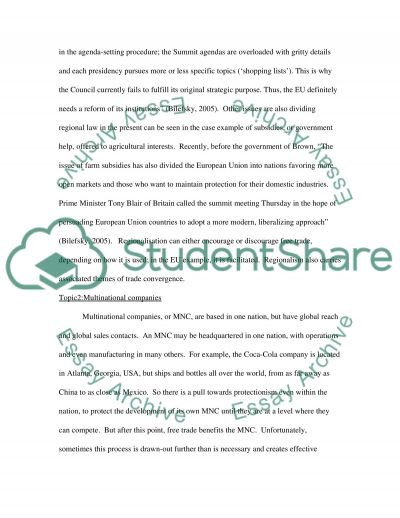 Issue in global business essay example