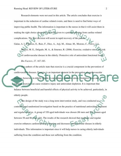 Review of Literature essay example
