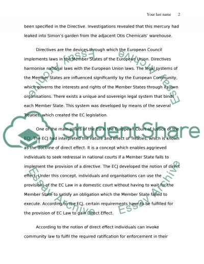 European Union Law Coursework essay example