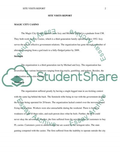 Assignment essay example