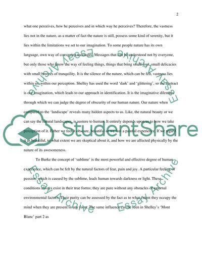 Burkes Key Ideas in Shelleys Work
