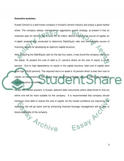 Investment decision essay example