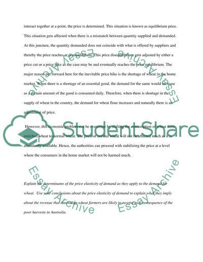 Micro Economics College Essay
