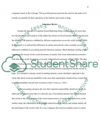 Corporate Social and Environmental Accouting Report essay example