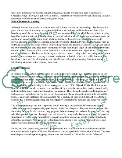 Ethical Hacking Essay example