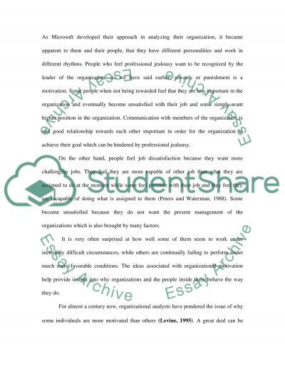 Strategic Business essay example