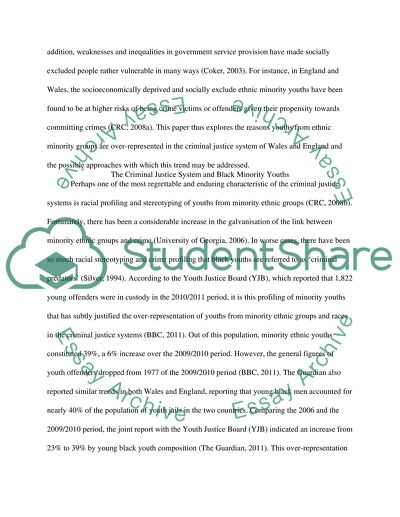 Youth Offending Essay