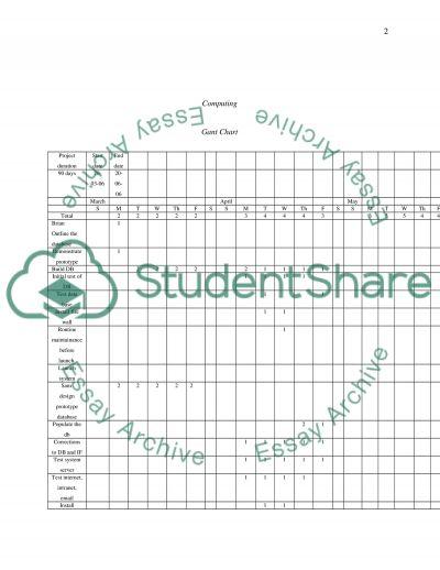Computing Assignment essay example
