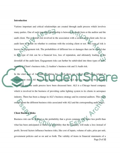 Auditing process essay example
