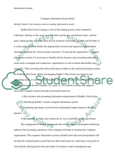 Computer Information System Brief essay example