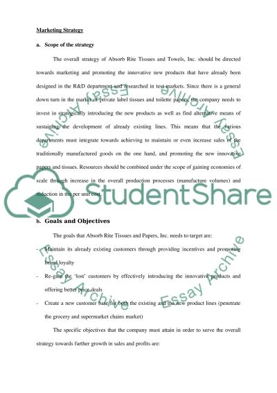 Marketing Strategy and Implementation Plan Essay example