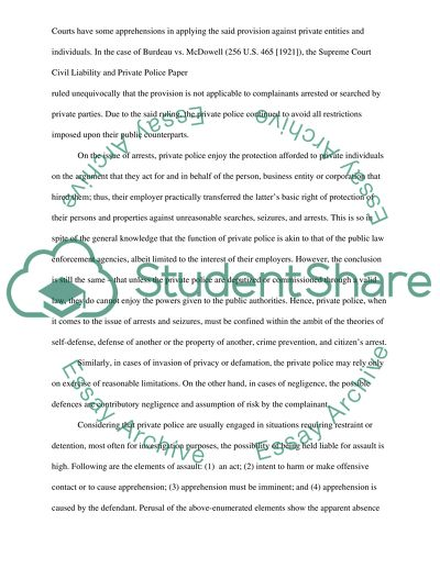 Civil Liability and Private Police Paper Essay Example