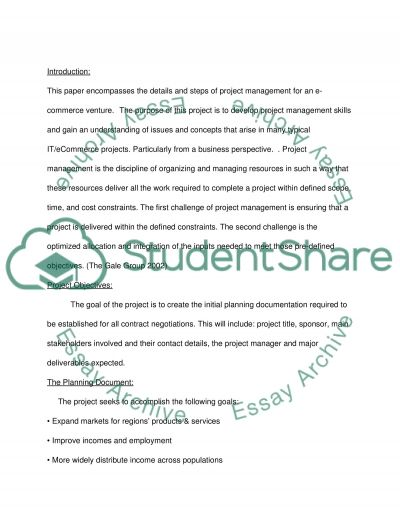 ECOMMERCE PROJECT MANAGEMENT essay example