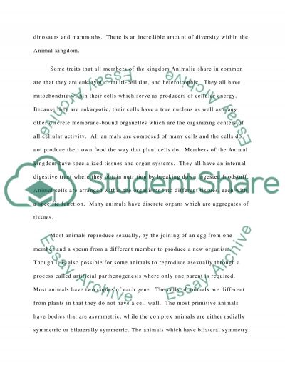 Characteristics of the Kingdom Animalia essay example