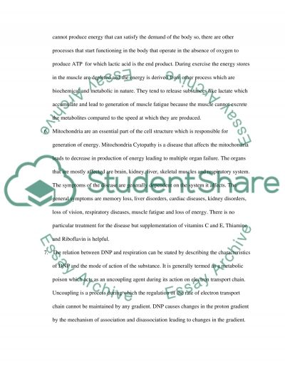 Biology essay example