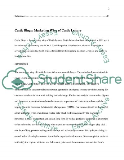 Castle Bingo: Marketing Wing of Castle Leisure essay example