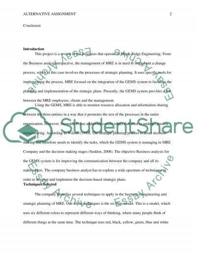 Alternative Assignment essay example