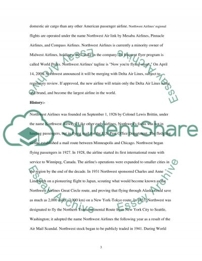 Northwest Airlines and American Airlines essay example