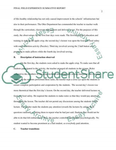 Final Field Experience Summative Report essay example