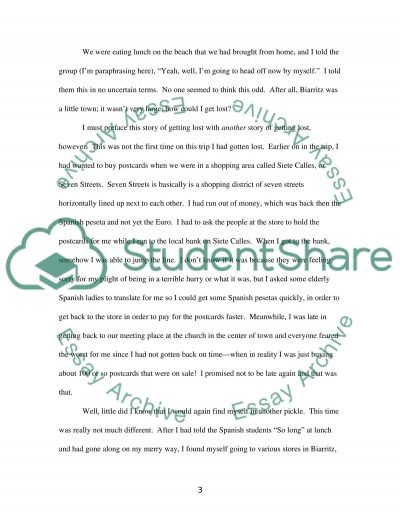 A Humorous Experience essay example