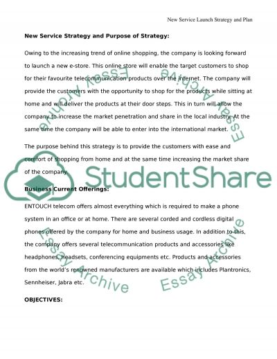 Marketing Plan - Product launch strategy essay example