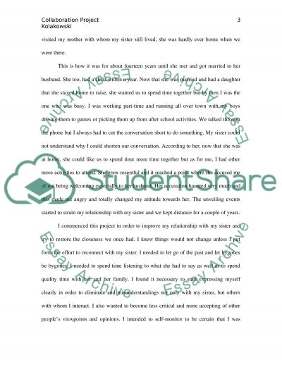 Collaboration Project essay example