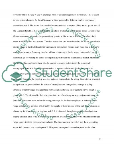 Labour Market Policy Write a continuous essay to answer one of the 5 questions essay example