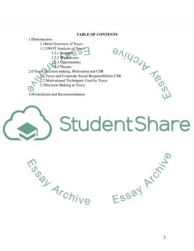 Organization Theory essay example