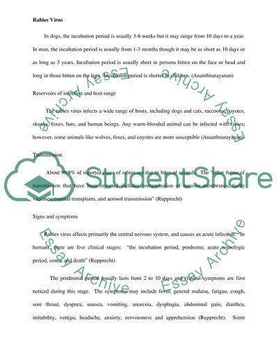 Childhood memory story essay