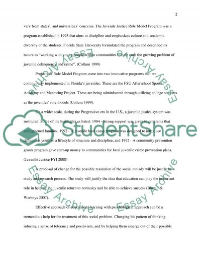 Research Program Proposal essay example