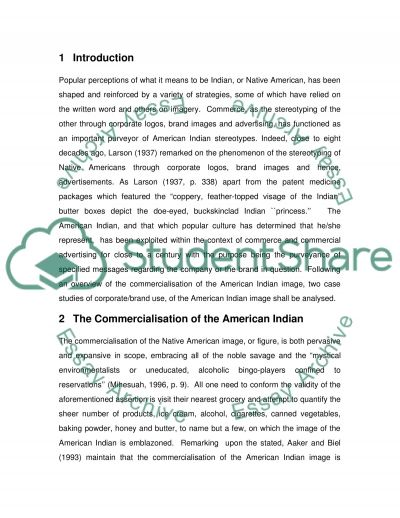 The stereotyping of Native Americans Essay example