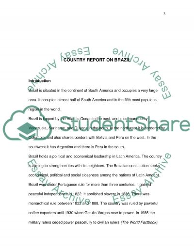 Country Report on Brazil essay example