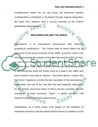 Regional integration arrangements essay example