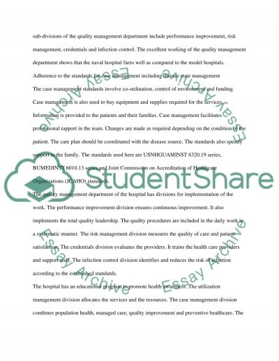 Hospital Case Management essay example