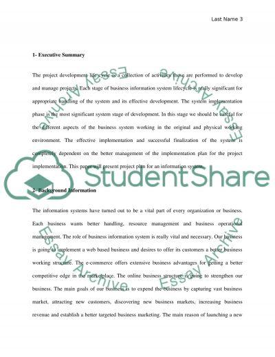 Implementation Plan essay example