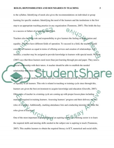 Roles, Responsibilities and Boundaries in Teaching essay example