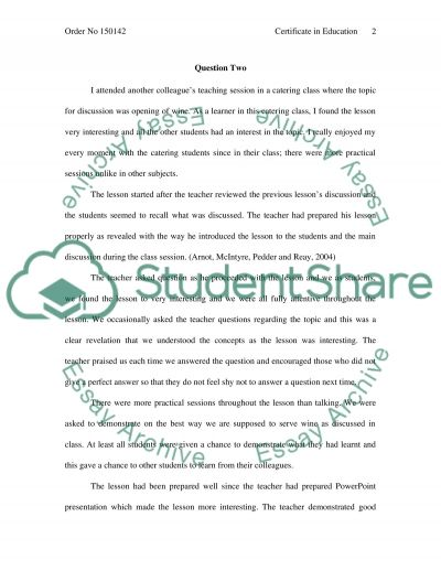 Certificate in Education essay example