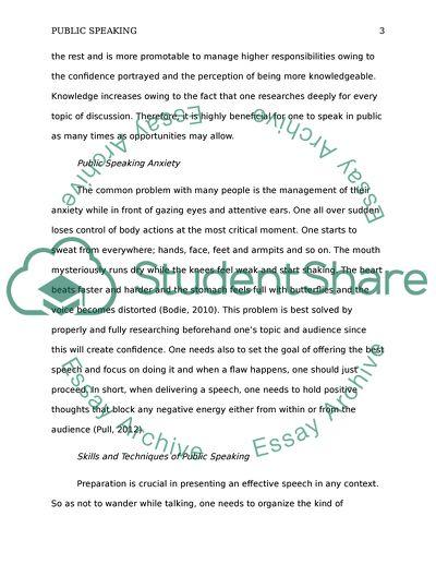 Public essay