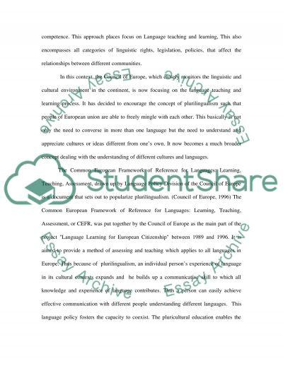 Plurilingualism essay example