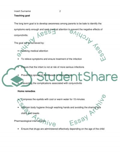 Teaching Plan Essay example