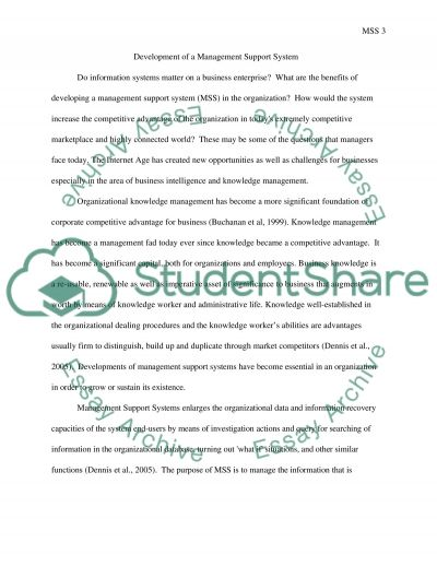 Management Support Systems Development essay example