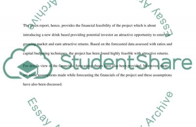 Introduction to Accounting and Finance Essay example