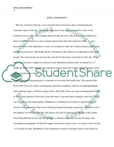Risk Assesment essay example