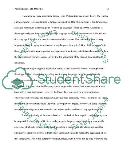 SIE Strategies Essay