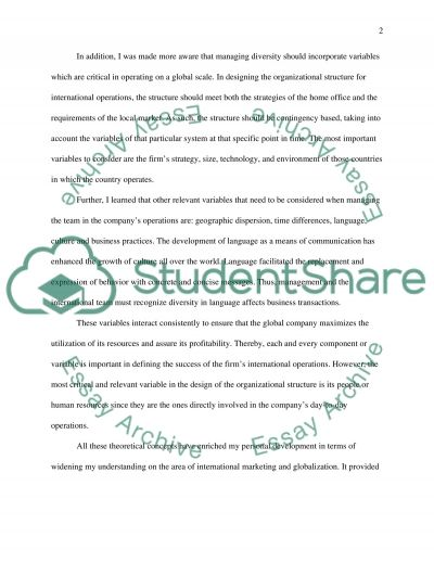 Reflective Exercise essay example