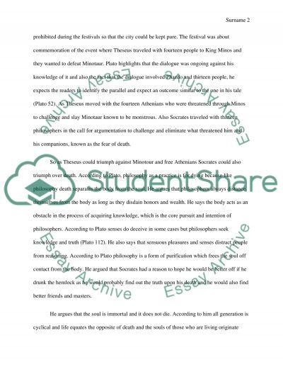 Plato Paper essay example