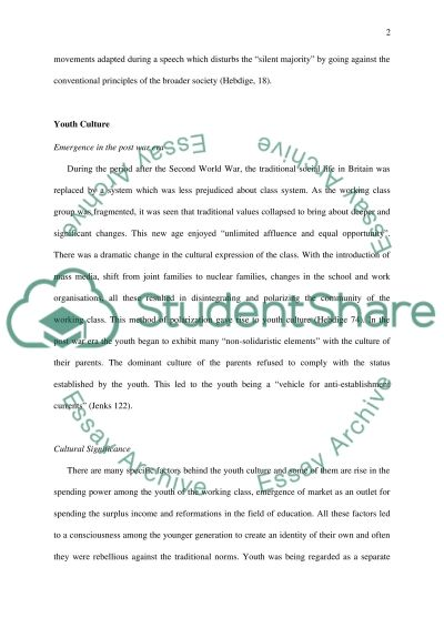 Youth and Urban Culture essay example
