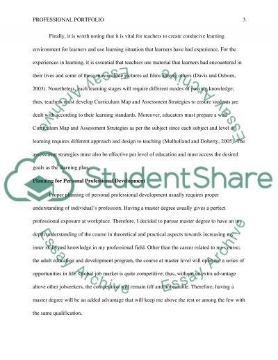 Professional Portfolio essay example